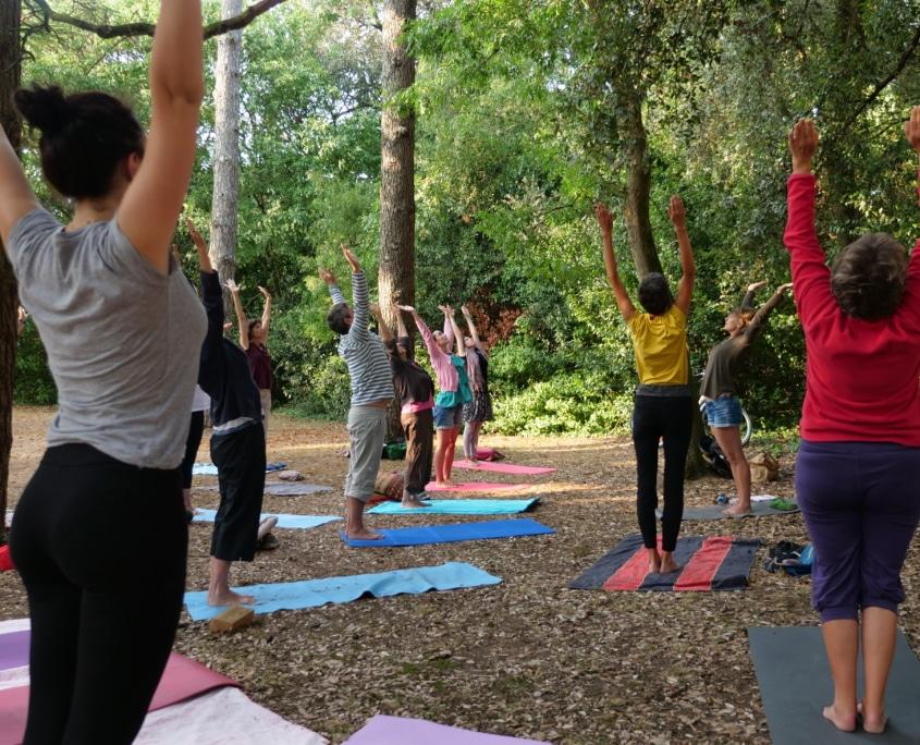 Yoga sous les arbres cet été à La Rochelle au parc Franck Delmas